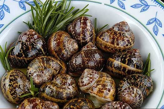 Cretan Snails ,Quality  Greek Traditional Food by Sirtaki